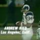 andy reid
