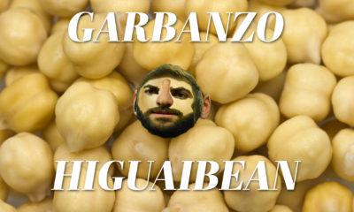 garbanzo higuaibean